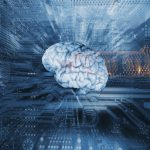 cerveau_information